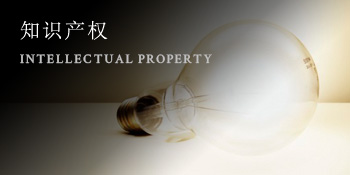 知识产权 INTELLECTUAL PROPERTY