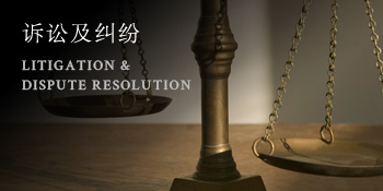 诉讼及纠纷 LITIGATION & <br />DISPUTE RESOLUTION