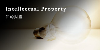 Intellectual Property 知的財産