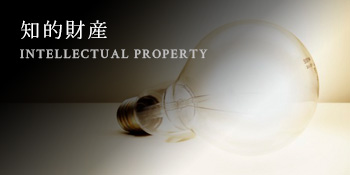 知的財産 INTELLECTUAL PROPERTY