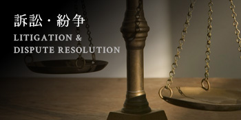 訴訟・紛争 LITIGATION & DISPUTE RESOLUTION